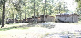 girls_cabin_900x430_1